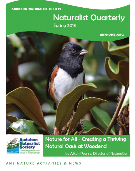 ANS Naturalist Quarterly - Spring 2018