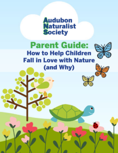 How to Help Children Fall in Love with Nature - Free eGuide by Audubon Naturalist Society