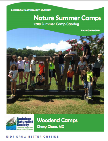 Camp Audubon is a nature-based summer camp with fun environmental activities for Pre-K through high school near Washington, DC in Chevy Chase, MD.