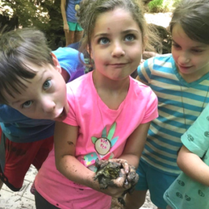 Nature-based summer camps providing environmental science education for Pre-K, elementary, middle school and high school students just outside Washington, DC in Chevy Chase, MD