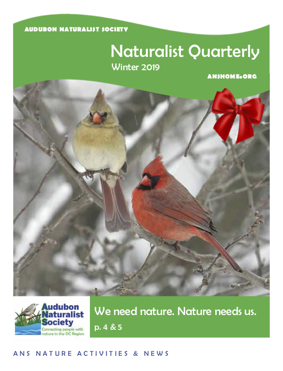 ANS Naturalist Quarterly - Winter 2018