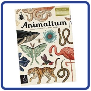 Animalium - Welcome to the Museum