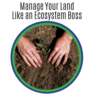 Manage Your Land Like an Ecosystem Boss