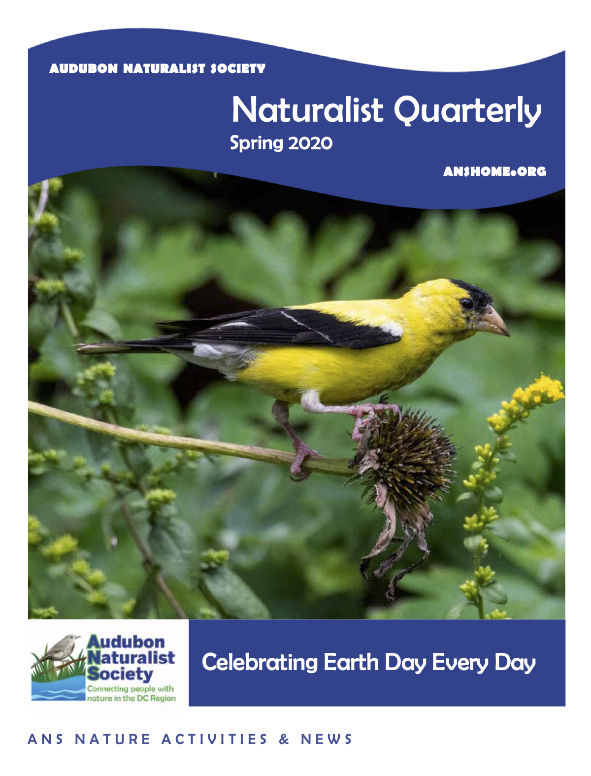 ANS Naturalist Quarterly - Spring 2020
