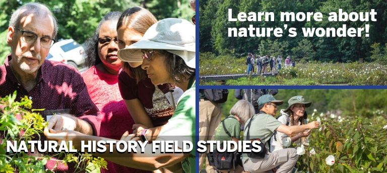 Upcoming Natural History Field Studies (NHFS) Classes for Spring 2020