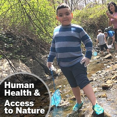 Human Health & Access to Nature: All people live in nature.  A healthy natural environment is one that includes healthy people who have clean air to breathe, clean water to drink, and safe places to be active and explore nature. Some communities in our region have been deprived of access to wealth, land, and healthy environments because of systemic racial, ethnic, and economic injustice. Therefore, ANS supports local environmental justice advocates, campaigns, and policies that intersect with our conservation priorities.