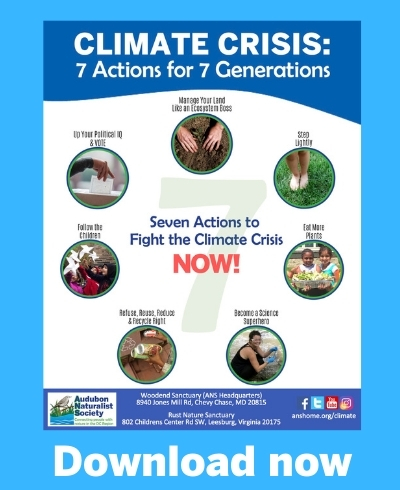 Climate Change: 7 Actions for 7 Generations