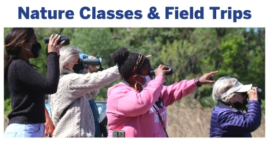 Adult Nature Classes & Field Trips