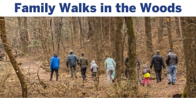 Family Walks in the Woods
