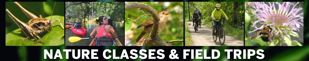 Nature Classes and Field Trips